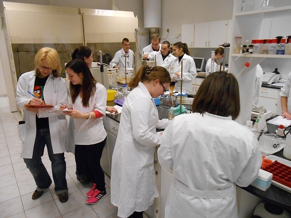 Élelmiszermérnöki alapképzés (BSc)