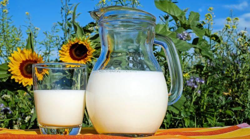 Új tejipari képzés Mosonmagyaróváron